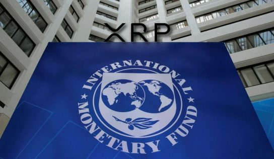 IMF and Ripple What is Going On?