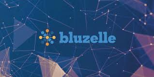 Bluzelle and Ripple Connection